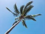 Budds Beach